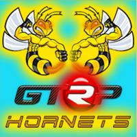 GTRP-RACING-TEAM